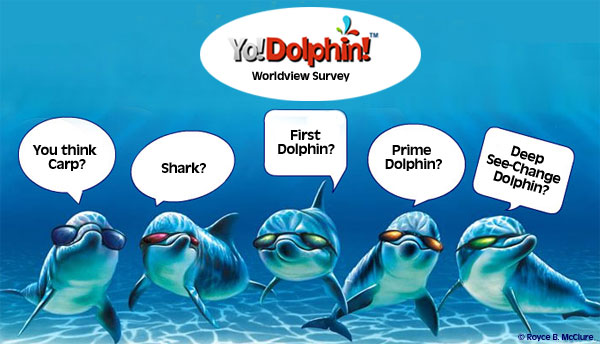 YoDolphin dolphins